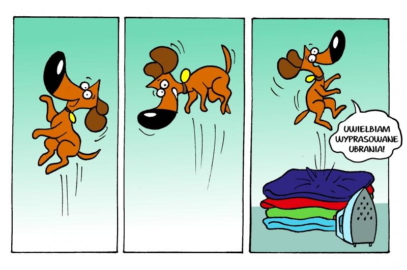 Każdy lubi uprasowane ubrania :)